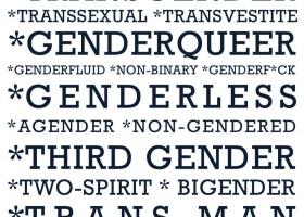 trans-poster-280x200